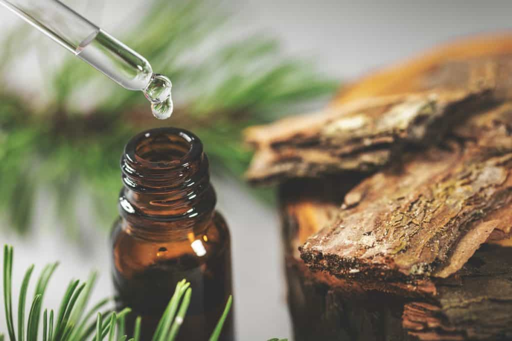 Pine Bark Extract for Sex Drive And Libido