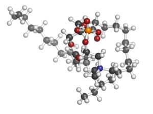 phosphatidylcholine,phosphatidylcholine structure,phosphatidylcholine benefits,phosphatidylcholine supplementation,phosphatidylcholine supplement,phosphatidylserine vs phosphatidylcholine,what is phosphatidylcholine,phosphatidylcholine amazon,phosphatidylcholine vs phosphatidylserine,