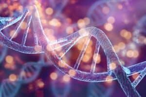 DNA Methylation, nootropics